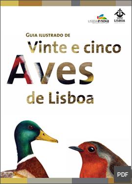 Guia de Aves de Lisboa