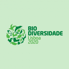 Bio Diversidade